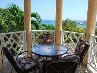 Columbus Heights Ocean View Studio Condo wi/fi 24hrs secu - Ocho Rios vacation rentals