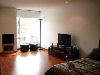 Modern, cozy studio apartment in great location - Bogota vacation rentals