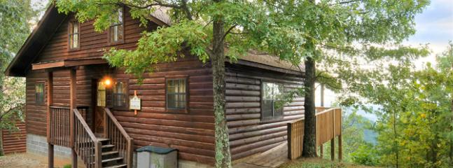 God's Country - Image 1 - Sevierville - rentals