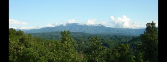 Beary Special - Sevierville vacation rentals