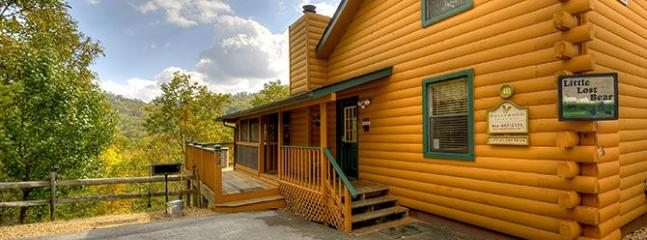 Little Lost Bear (3) - Image 1 - Sevierville - rentals