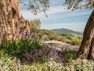 LA SORGENTE - San Martino in Freddana vacation rentals