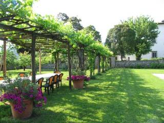 Historic 16th Century Villa in Tuscany with  Private Pool and Shared Tennis Court - Villa Lucchesia - San Pietro a Marcigliano vacation rentals