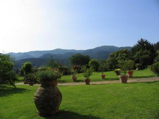 Historic 16th Century Villa in Tuscany with  Private Pool and Shared Tennis - San Pietro a Marcigliano vacation rentals