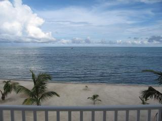 Comfortable Condo with Deck and Internet Access - San Pedro vacation rentals