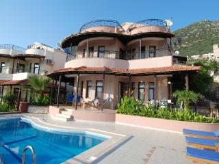 Lime Tree Villa - Kalkan vacation rentals