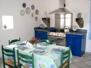 Provencal hilltop village, 3 bdrm home - La Begude-de-Mazenc vacation rentals