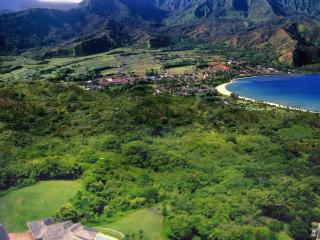 Kauai Luxury home with pool and amazing oceanviews - Haena vacation rentals