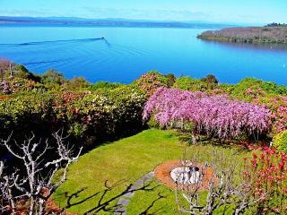 Acacia View. - Taupo vacation rentals