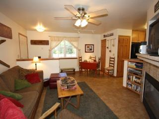 Frisco`s Perfect Blend of In-Town and Seclusion -- Quiet but in the Heart of It All - Frisco vacation rentals