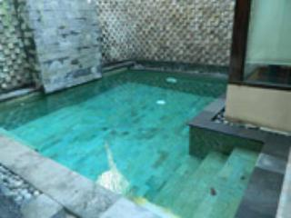 HIDDEN GARDEN VILLA #2  Safe & Secure with us - Legian vacation rentals