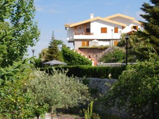 Beautiful villa to enjoy with family and friends - Province of Granada vacation rentals