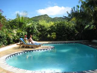 "Quality ""Creole Style"" Villa - min. 2 weeks rental - Bois des Amourettes vacation rentals"
