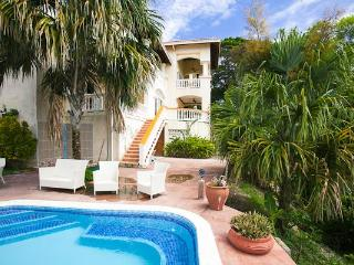 Orchid Breeze apartment at Villa Delfin! - West Bay vacation rentals
