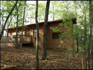 Birch Tree, Romantic Get-Away with Hot Tub - North Georgia Mountains vacation rentals