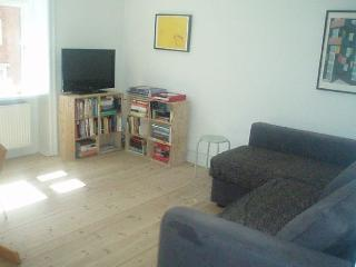 Nice Copenhagen apartment close to Lergravsparken Metro - Copenhagen vacation rentals