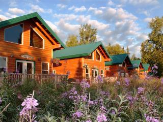 World Famous Kenai River, in Soldotna, Alaska - Soldotna vacation rentals