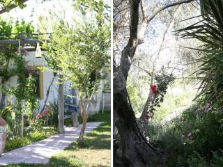 The olive yard house. w. Chloor free pool, big land - Rhodes vacation rentals
