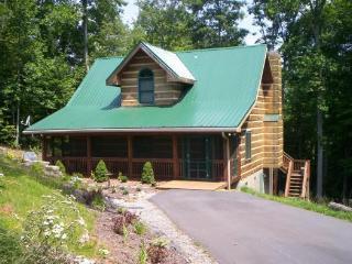 Bird Nest - West Jefferson vacation rentals