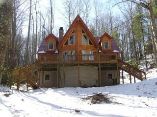 Cabin by the Lake (Mountain Cabin) - Fleetwood vacation rentals