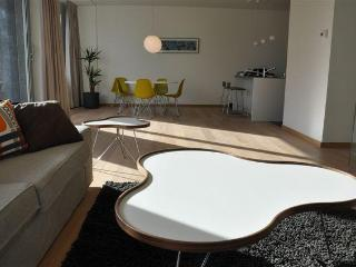 Antwerp-Apartment, in trendy, old harbour area - Belgium vacation rentals