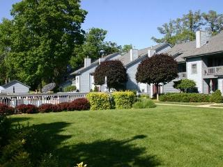 Cannery Row 6 - Cross the street to the lake - South Haven vacation rentals
