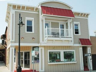 Harbortown Haven - South Haven vacation rentals