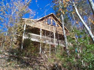 Third Night Free....Year Round Mtn Views - Mineral Bluff vacation rentals