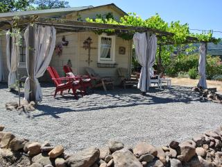 Free Nite~Vineyard Home,Bikes,Near Plaza,Wine,Wifi - Sonoma vacation rentals
