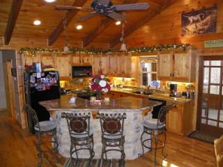 Nice House with Deck and Internet Access - Lowell vacation rentals