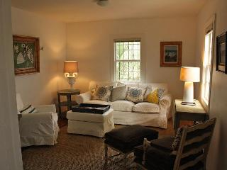 Downtown Charleston Carriage House w Courtyard - Charleston vacation rentals