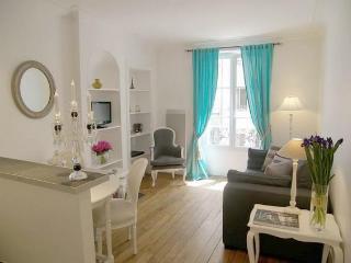 Great 2 Bedroom on Rue du Champ de Mars in Paris - Paris vacation rentals