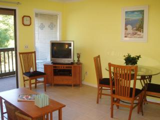 Oceanfront Resort! 100 yards to pool and beach! - Hilton Head vacation rentals