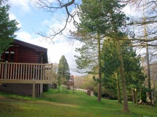 The Larches - Delightful Norwegian Log Chalet - Church Stretton vacation rentals