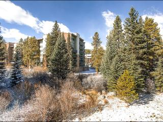 Central Location - Spacious Interior (13184) - Breckenridge vacation rentals