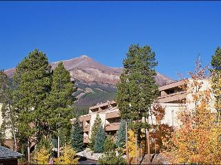 Stunning Mountain Views - Walk to Town (13345) - Breckenridge vacation rentals