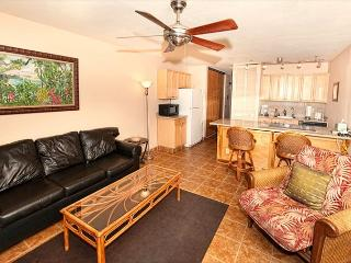 Renovated 1-bedroom condo in a great location near Charley Young Beach. - Kihei vacation rentals