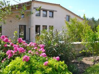 Nice 4 bedroom House in Saint-Sauveur-de-Meilhan with Internet Access - Saint-Sauveur-de-Meilhan vacation rentals