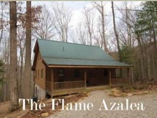 Nice Cabin with Deck and A/C - Townsend vacation rentals
