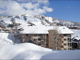Fantastic Ski In, Walk Out Location - Aggressively Priced - Great Value (5455) - Steamboat Springs vacation rentals