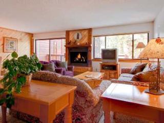 1 Bedroom, 2 Bathroom House in Breckenridge  (10D1) - Breckenridge vacation rentals