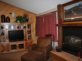 2 Bedroom, 2 Bathroom House in Breckenridge  (14F) - Breckenridge vacation rentals