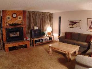 2 Bedroom, 2 Bathroom House in Breckenridge  (06D) - Breckenridge vacation rentals