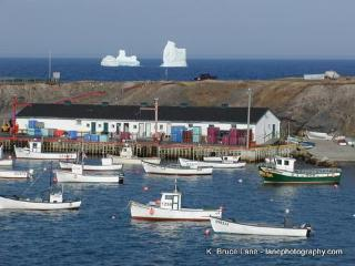 On the Ocean- Whale watch from your back deck - Saint John's vacation rentals
