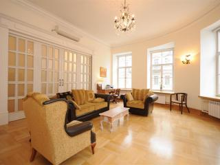 Top End 2 Bedroom Apartment Central St. Petersburg - Saint Petersburg vacation rentals