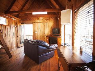The Bird Nest Cabin - Stanton vacation rentals
