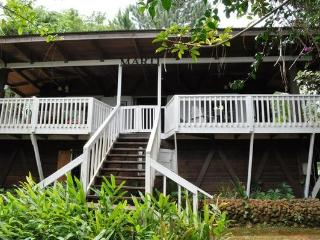 INCREDIBLE Rain Forest Experience - San Juan vacation rentals
