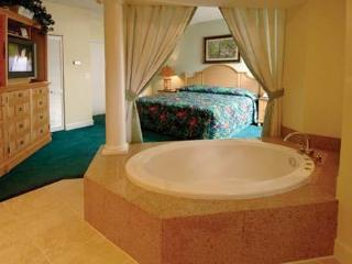 Next To Disney World. 3-Br Condo w/ Jacuzzi - Orlando vacation rentals