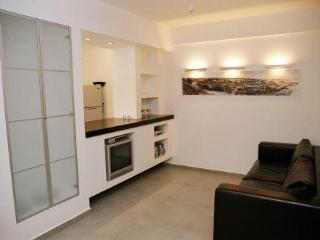 Beautiful Modern designed in German Colony. - Jerusalem vacation rentals