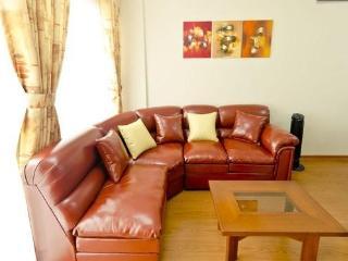 Modern 2 Bedroom Apt in Heart of Miraflores - Lima vacation rentals